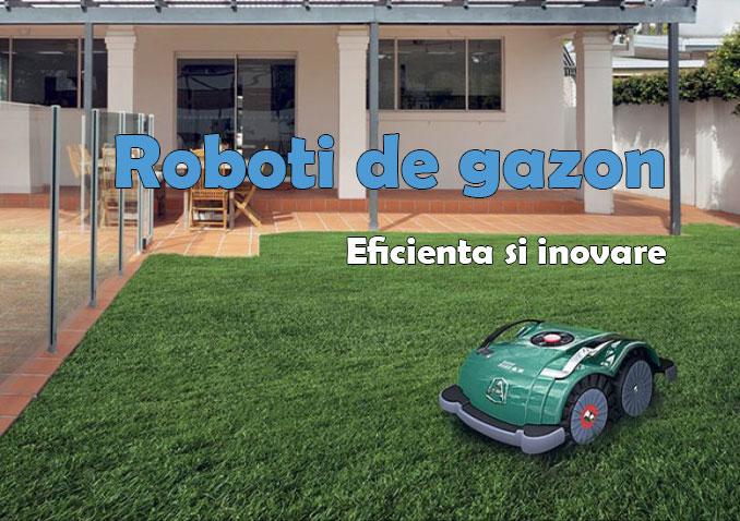 Robot gazon